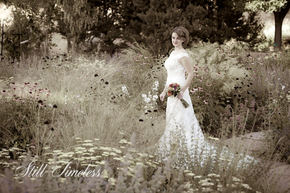 Red butte gardens bridal photos still timeless blog for Affordable utah wedding photographers