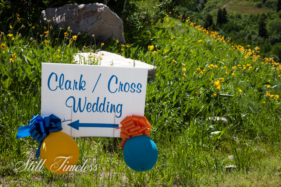 top utah wedding photographer-1